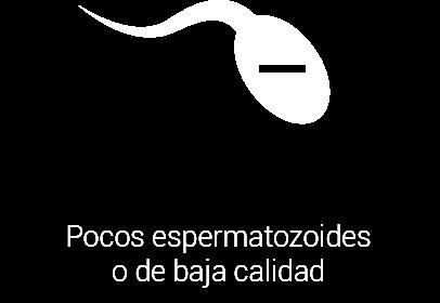 Pocos espermatozoides o de baja calidad